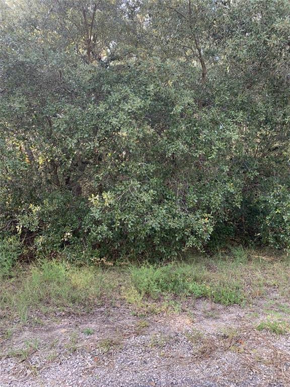 8864 N Barbados Way, Citrus Springs, FL 34433 (MLS #R4902359) :: Cartwright Realty