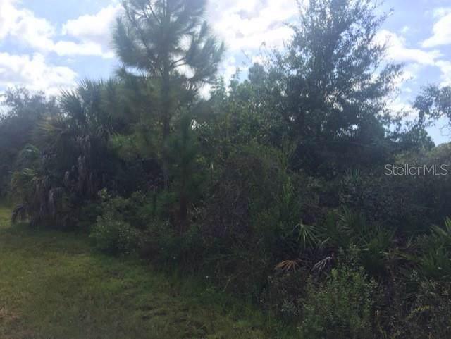 SW Lobelia Court, Dunnellon, FL 34431 (MLS #R4902365) :: GO Realty