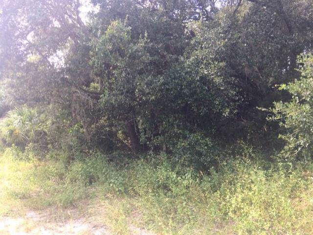 NE 226TH Street, Orange Springs, FL 32182 (MLS #R4902381) :: Cartwright Realty