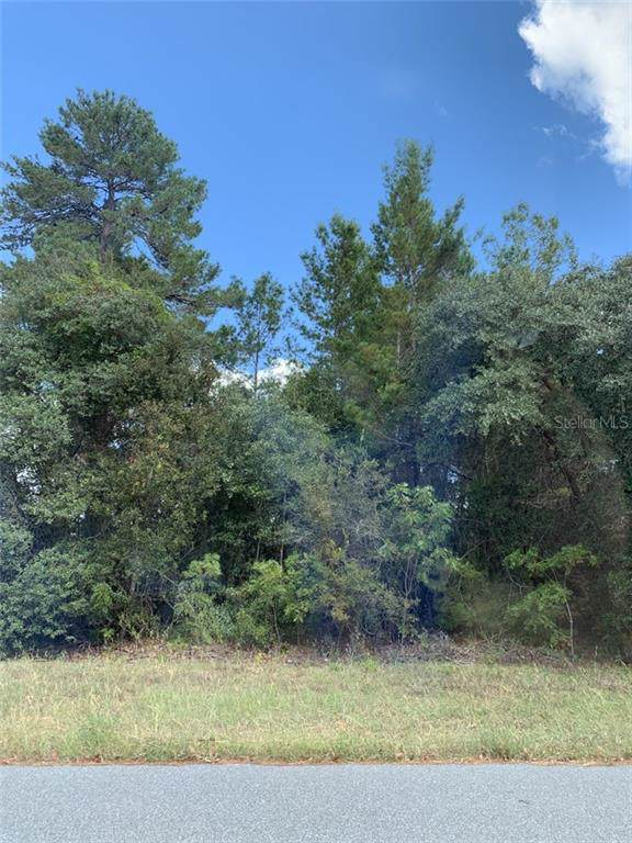 6411 W Moss Lane, Crystal River, FL 34429 (MLS #R4902610) :: Griffin Group