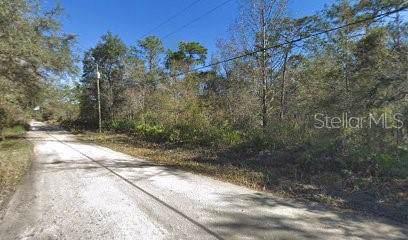 Atlee Street, New Port Richey, FL 34654 (MLS #R4902668) :: The Duncan Duo Team