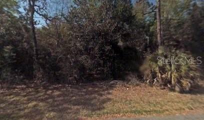 8400 N Sarazen Drive, Citrus Springs, FL 34434 (MLS #R4902688) :: Team Borham at Keller Williams Realty