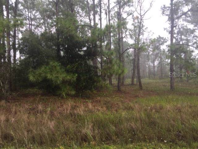 Bream Drive, Satsuma, FL 32189 (MLS #R4902781) :: Team Buky