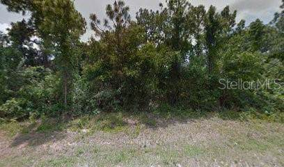 5009 3RD Street W, Lehigh Acres, FL 33971 (MLS #R4902798) :: Bustamante Real Estate