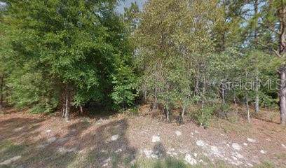 Fisher Road, Ocklawaha, FL 32179 (MLS #R4902801) :: Cartwright Realty