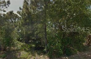 149 Tillman Street, Port Charlotte, FL 33954 (MLS #R4902819) :: GO Realty