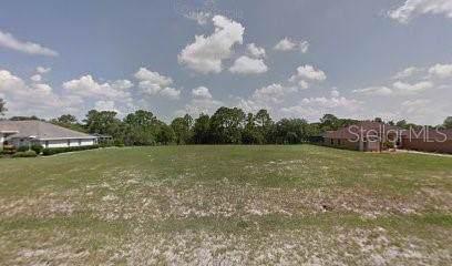 1197 E Triple Crown Loop, Hernando, FL 34442 (MLS #R4902826) :: Premium Properties Real Estate Services