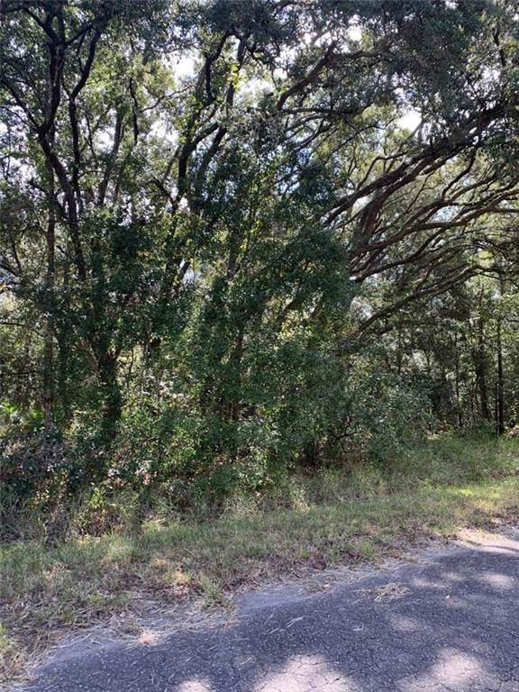 Rainbow Drive, Florahome, FL 32140 (MLS #R4902831) :: Cartwright Realty