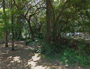Cr 423, Lake Panasoffkee, FL 33538 (MLS #R4902839) :: GO Realty