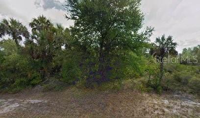 3230 Bunker Hill Street, Port Charlotte, FL 33948 (MLS #R4902878) :: GO Realty