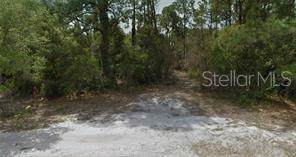 17051 Greenan Avenue, Port Charlotte, FL 33948 (MLS #R4902882) :: GO Realty