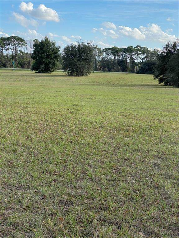 22182 Obrien Road, Howey in the Hills, FL 34737 (MLS #R4902943) :: Griffin Group