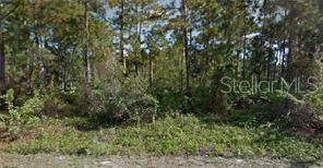 765 Pinecastle Drive, Lehigh Acres, FL 33974 (MLS #R4902945) :: Team Buky