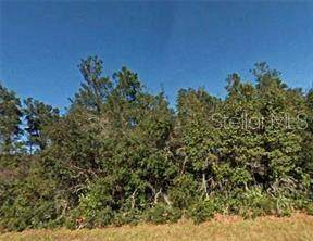 NE 134TH Street, Fort Mc Coy, FL 32134 (MLS #R4903058) :: Heckler Realty