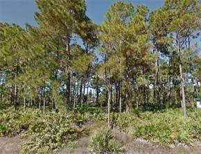 1135 Chiefland Street E, Lehigh Acres, FL 33974 (MLS #R4903497) :: BuySellLiveFlorida.com