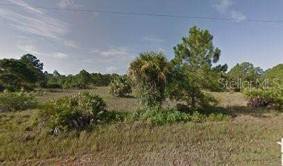 866 Anchor Street E, Lehigh Acres, FL 33974 (MLS #R4903543) :: BuySellLiveFlorida.com