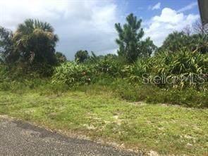 7459 Mitchell Road, Brooksville, FL 34601 (MLS #R4903777) :: Team Bohannon Keller Williams, Tampa Properties
