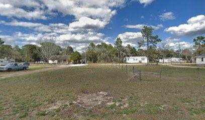 Naples Street, Brooksville, FL 34604 (MLS #R4903838) :: The Heidi Schrock Team