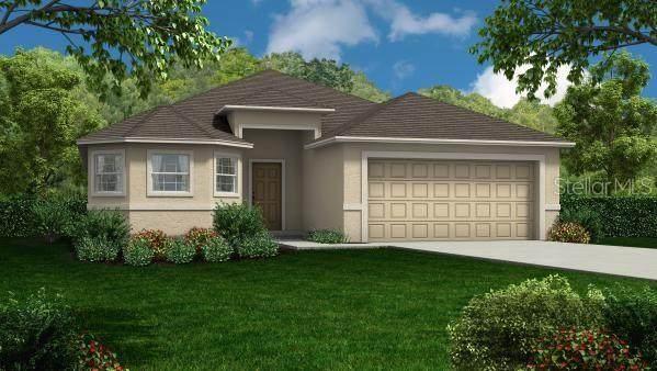1840 Creeks Vista Boulevard, Lakeland, FL 33810 (MLS #R4903887) :: Pepine Realty