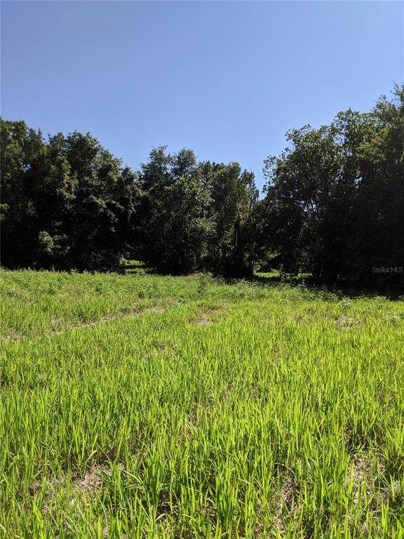 Sloans Ridge Road, Groveland, FL 34736 (MLS #R4904820) :: Armel Real Estate