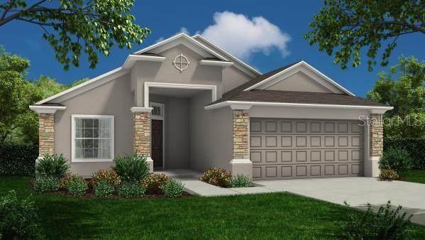 8112 Campbell Crossing Circle, Lakeland, FL 33810 (MLS #R4905193) :: Zarghami Group