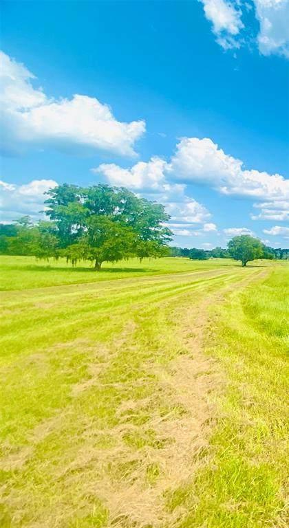 855 SE 150TH Street, Summerfield, FL 34491 (MLS #R4905240) :: Premium Properties Real Estate Services