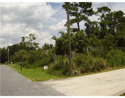 208 Rontunda Drive, Kissimmee, FL 34758 (MLS #S4702485) :: The Duncan Duo Team