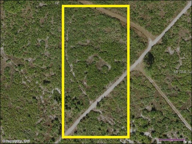 Suburban Ests Sec 24...3134 001B, Saint Cloud, FL 34771 (MLS #S4855086) :: G World Properties