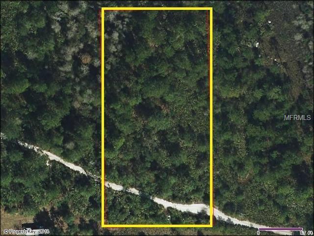 Suburban Ests Sec 30...2134 002G, Saint Cloud, FL 34771 (MLS #S4857421) :: G World Properties