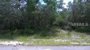 1248 Amazon Drive, Poinciana, FL 34759 (MLS #S4859097) :: KELLER WILLIAMS CLASSIC VI