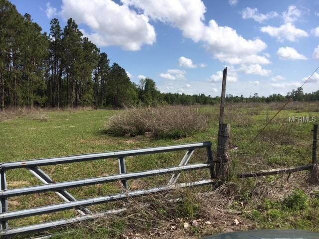 Dwights Road, Clermont, FL 34714 (MLS #S5000515) :: Bustamante Real Estate