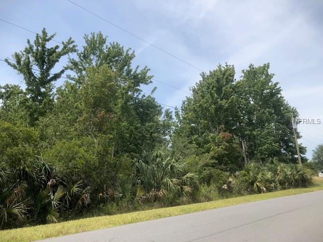 Atlas Drive, Saint Cloud, FL 34771 (MLS #S5001473) :: The Duncan Duo Team