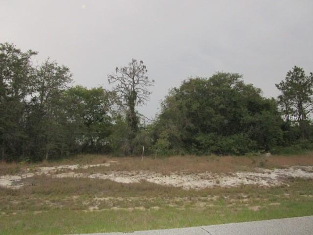 1320 Congo Drive, Poinciana, FL 34759 (MLS #S5001751) :: The Duncan Duo Team