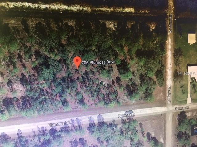 706 Plumosa Drive, Indian Lake Estates, FL 33855 (MLS #S5007371) :: Team Pepka