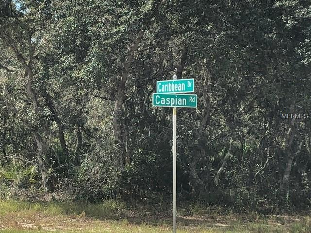 1229 Caribbean Drive, Poinciana, FL 34759 (MLS #S5009013) :: Burwell Real Estate