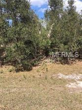 917 Marilyn Avenue S, Lehigh Acres, FL 33974 (MLS #S5014751) :: Mark and Joni Coulter | Better Homes and Gardens