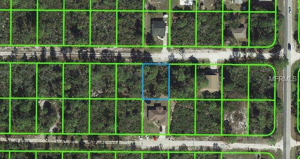 316 Brant Avenue, Sebring, FL 33870 (MLS #S5014962) :: Florida Real Estate Sellers at Keller Williams Realty