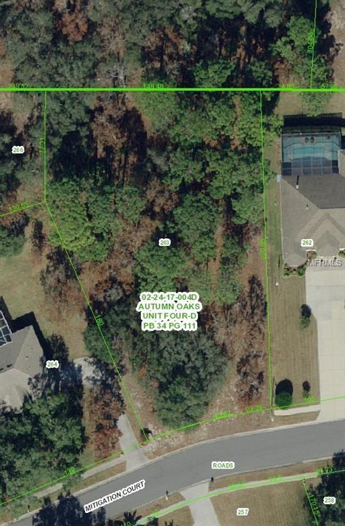 Mitigation Court, Hudson, FL 34667 (MLS #S5016036) :: Mark and Joni Coulter | Better Homes and Gardens