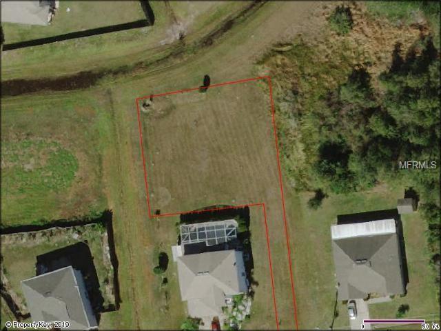 Andora Court, Kissimmee, FL 34758 (MLS #S5016688) :: Bustamante Real Estate