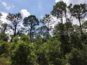 Bronco Drive, Saint Cloud, FL 34771 (MLS #S5022206) :: Homepride Realty Services