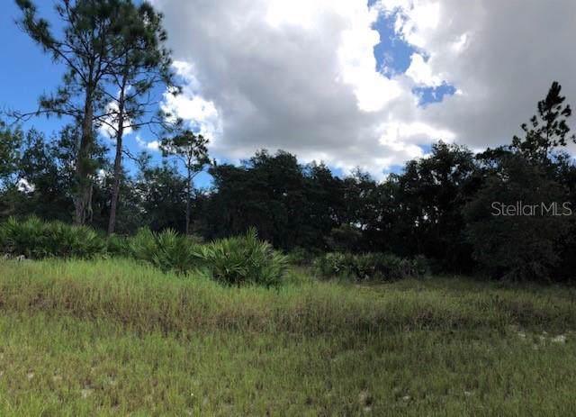 Sarasota Court, Poinciana, FL 34759 (MLS #S5022547) :: Ideal Florida Real Estate