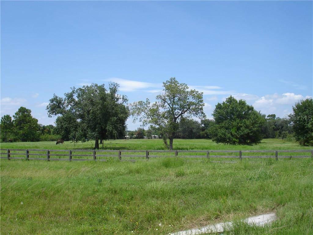 5625 Irlo Bronson Memorial Highway - Photo 1