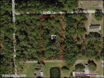 Boutin Lane, Saint Cloud, FL 34772 (MLS #S5025653) :: The Duncan Duo Team