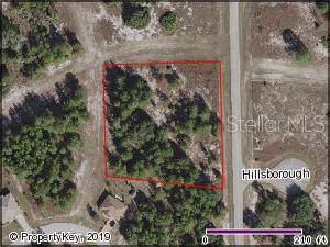 Hillborough Drive, Poinciana, FL 34759 (MLS #S5026048) :: Cartwright Realty