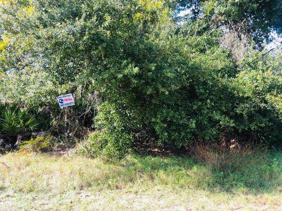 LOT 7 Punta Gorda Drive, Poinciana, FL 34759 (MLS #S5027486) :: Rabell Realty Group