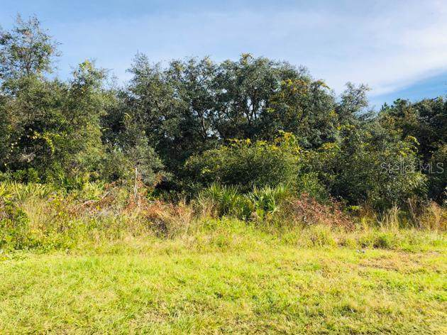 1220 Amazon Lane, Poinciana, FL 34759 (MLS #S5027504) :: Rabell Realty Group