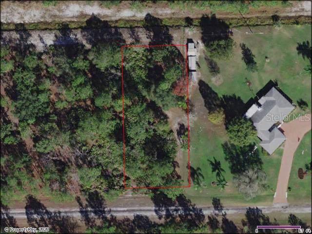 606 Plumosa Drive, Lake Wales, FL 33898 (MLS #S5028819) :: RE/MAX Realtec Group