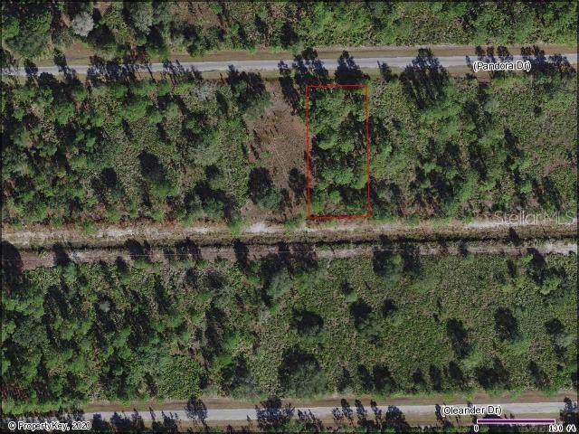 4081 Pandora Drive, Indian Lake Estates, FL 33855 (MLS #S5028829) :: Team Bohannon Keller Williams, Tampa Properties