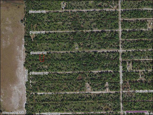 Oleander Drive, Indian Lake Estates, FL 33855 (MLS #S5028831) :: The Duncan Duo Team