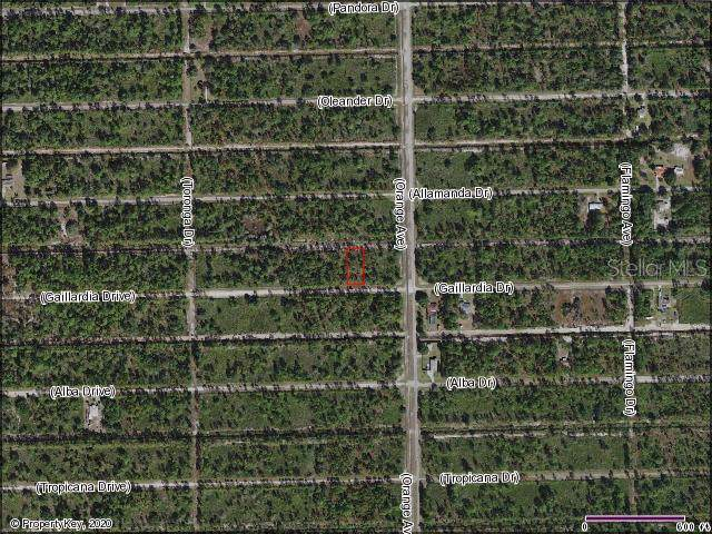 806 Gaillardia Drive, Indian Lake Estates, FL 33855 (MLS #S5028833) :: The Duncan Duo Team